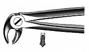 Forceps Büchs friction grip
